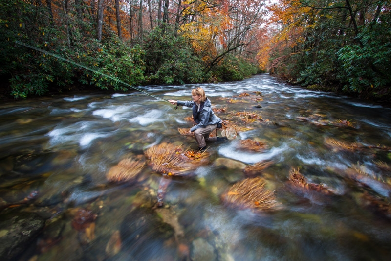 River and streams north carolina 39 s brookings cashiers for Davidson river fly fishing